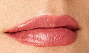 Lip Liner No Fill